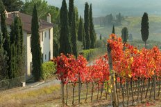 Farmhouse In Tuscan Scenery Wall Mural