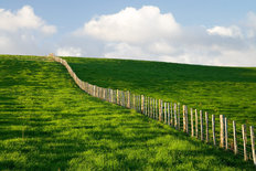Fence Line Wall Mural