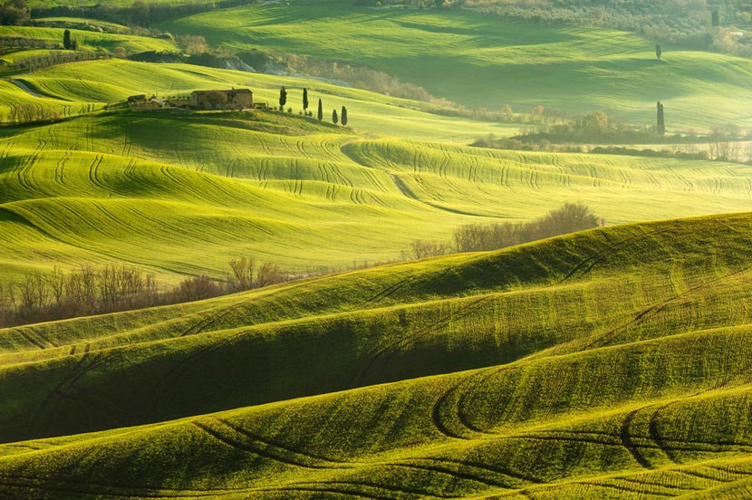 Tuscan fields and forests in golden light