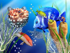 Fishies and Bubbles Wallpaper Mural
