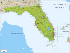 Florida Map Wallpaper Mural