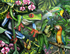 Frogs in the Mist Wallpaper Mural