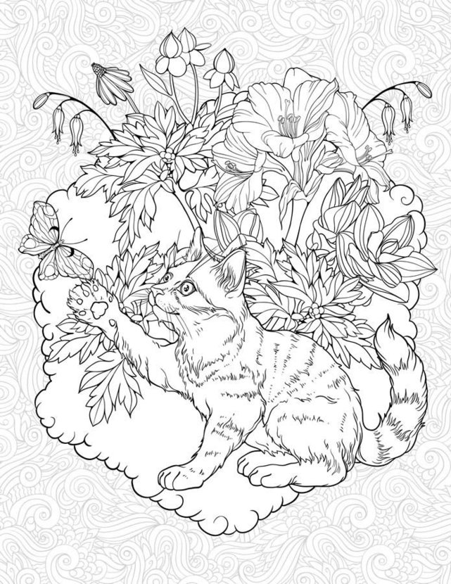 Garden Cat image shows playful kitten and a butterfly surrounded by a floral garden