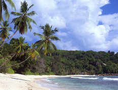 Gentle Surf On Anse Takamaka, Seychelles Wall Mural
