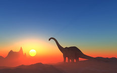 Good Morning Bronto Mural Wallpaper