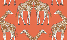 Giraffe Pattern Mural Wallpaper