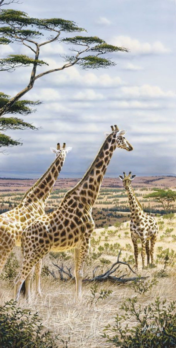 Giraffes In Serengeti Mural Wallpaper