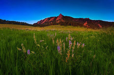 Glowing Flatirons And Wildflowers Wall Mural