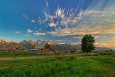 Golden Teton Morning Mural Wallpaper