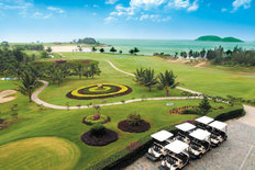 Golf Course And Carts Wallpaper Mural