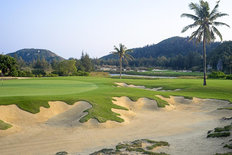 Palm Tree Sand Bunker Wall Mural