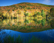 Green Mountain King's Pond Mural Wallpaper