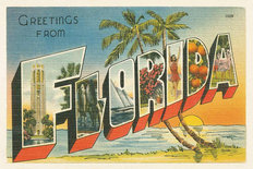 Greetings From Florida Wallpaper Mural