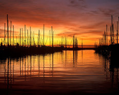 Harbor Sunrise Wallpaper Mural