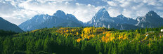 Hillside Of Aspen Beneath The Teton Range Wall Mural