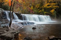 Hooker Falls With Dogwood - Blue Ridge Waterfall Wall Mural