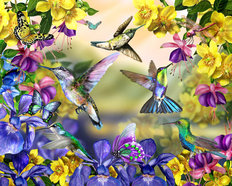 Hummingbirds and Butterflies Mural Wallpaper