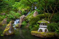 Japanese Garden Mural Wallpaper