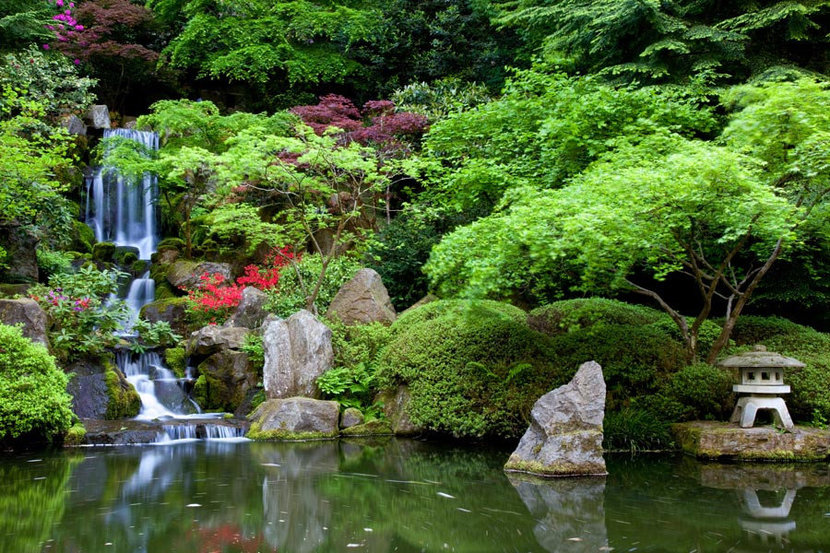 Picture of a traditional Japanese garden filled with plants, a pond, and a waterfall