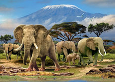 Kilimanjaro Morning Wall Mural