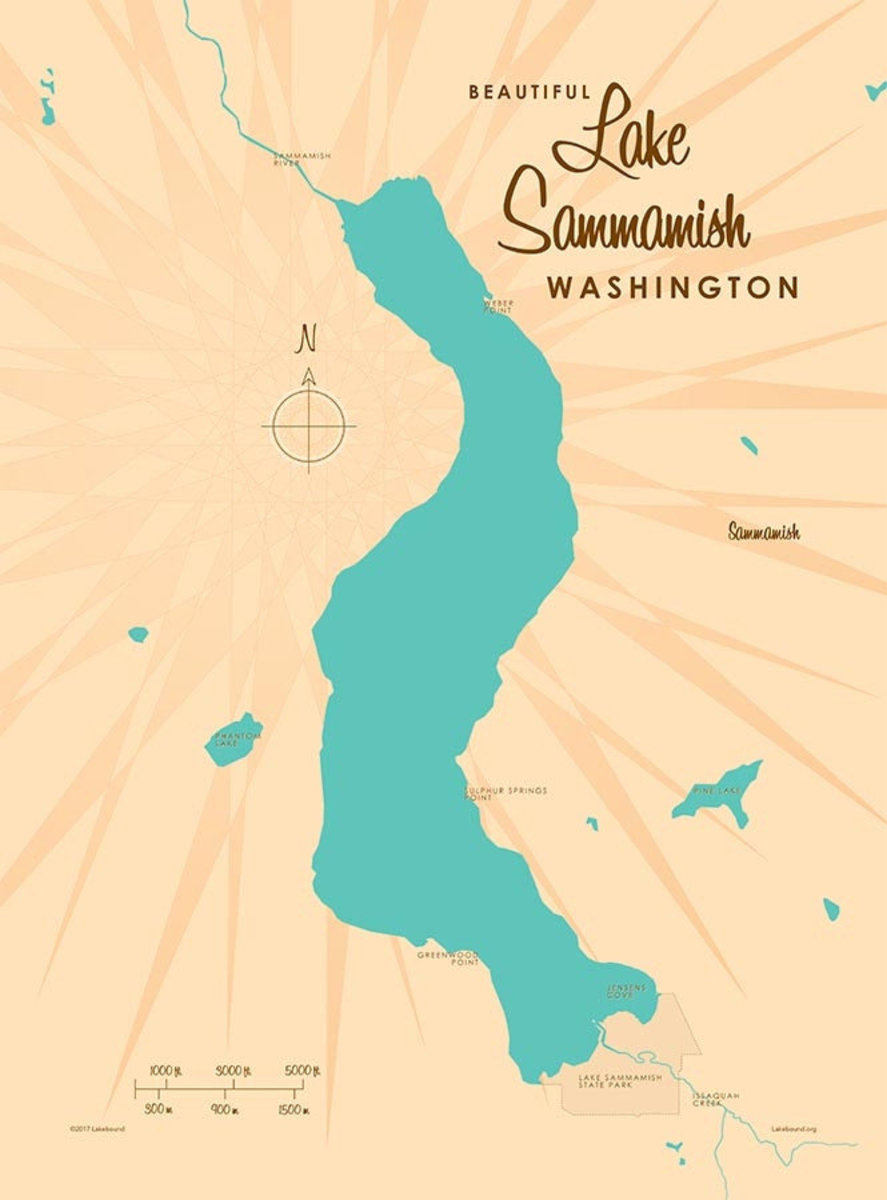 Lake Sammamish, WA Lake Map Wall Mural