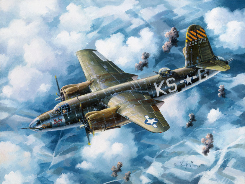 Last Flight Of The Shirley-D Wall Mural