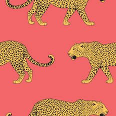 Leopards With Coral Background Wallpaper