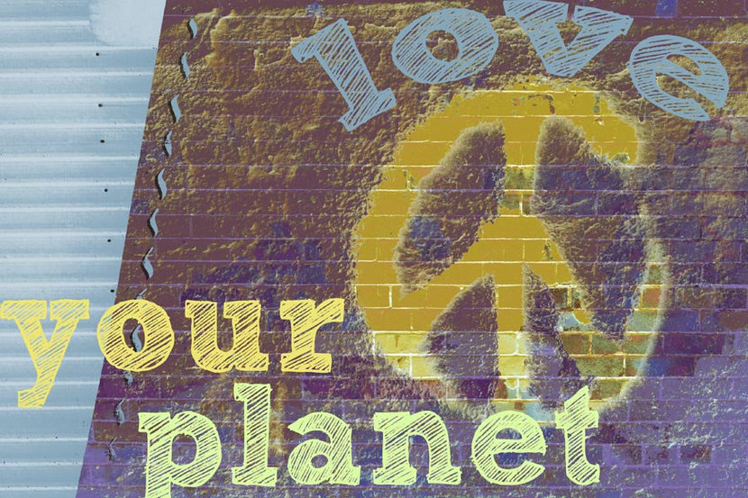 Love Your Planet Wall Mural