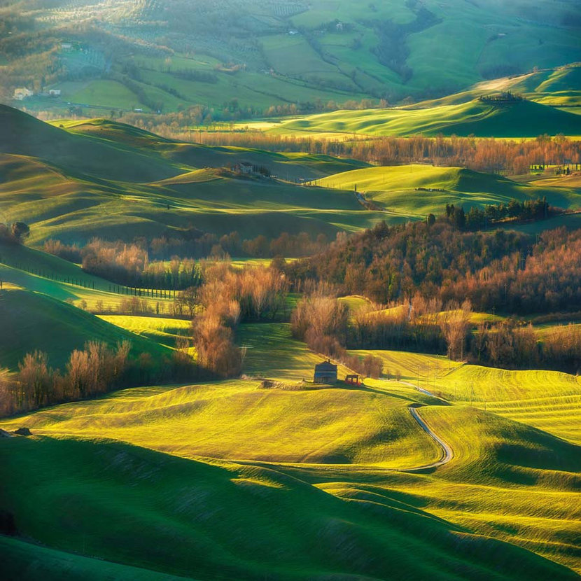 a magnificent Tuscan landscape with rolling hills and fields lit with warm sunlight