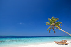 Maldives Palm Beach with Sunbeds Wall Mural