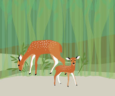 Mama and Baby Deer Wall Mural