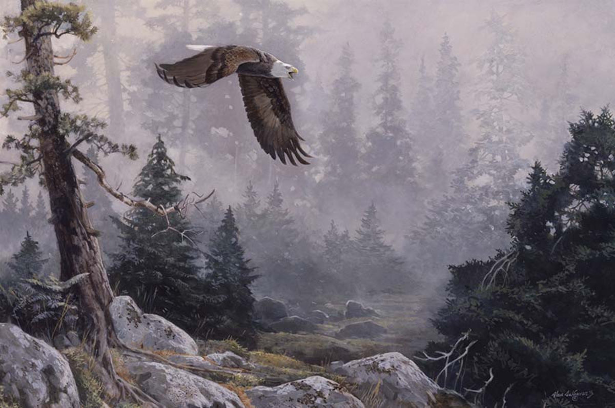 Mist and Majesty Wall Mural