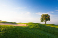 Early Morning Golf Course Mural Wallpaper