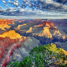 Morning Light at Grand Canyon Mural Wallpaper