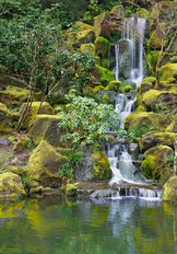 Moss Covered Waterfall Wallpaper Mural