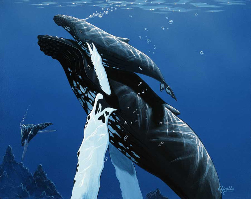 Mother Humpback With Baby Wallpaper Mural