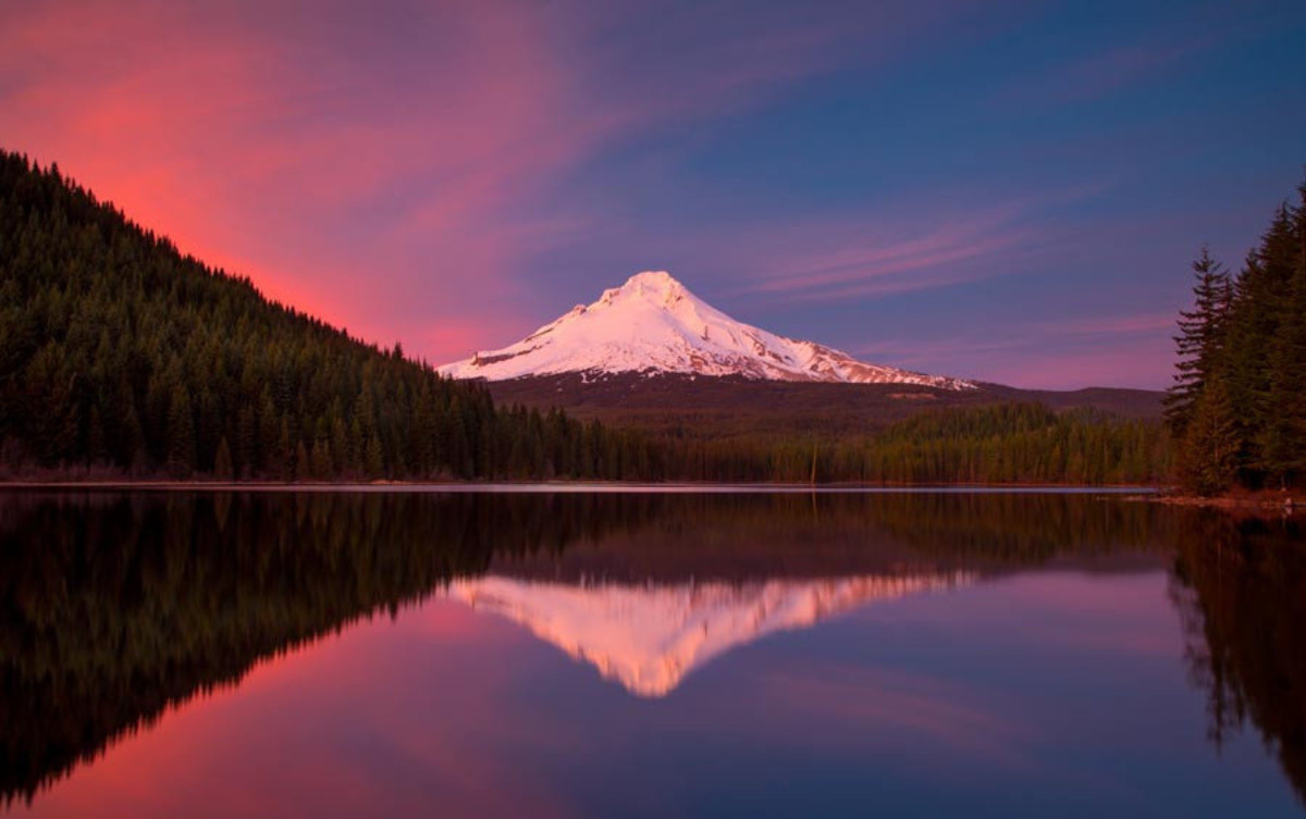 Snowcapped Mt. Hood and forests are reflected in the waters of Trillium Lake at sunset