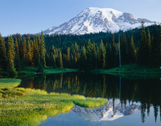 Mt. Rainier Mirrored in Reflection Lake Mural Wallpaper