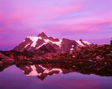 Mt. Shuksan Reflection Mural Wallpaper