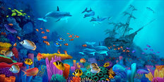 Ocean Colors Mural Wallpaper