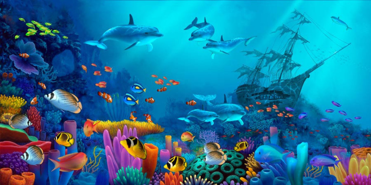 A colorful aquarium or ocean scene full of sea life including tropical fish, dolphins, a coral reef, and a sunken ship.