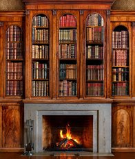 Old Antique Bookcase And Fireplace Wall Mural