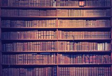 Old Books On Wooden Bookcase Wall Mural