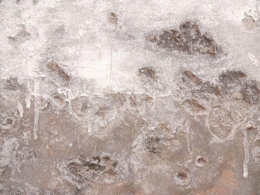 Gritty whitewash drips and crevices in a grungy surface