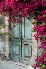 Old Wooden Door With Bougainvillea in Cyprus Wallpaper Mural