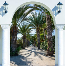 Palm Tree Archway Wallpaper Mural