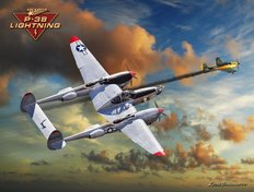 P-38 Lightning Mural Wallpaper