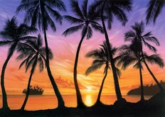Palm Beach Sundown Wall Mural