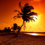 Tropical beach at sun set with brilliant oranges and yellows.