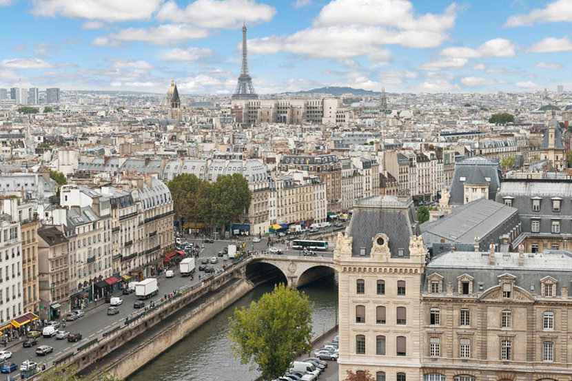 Panoramic View of Paris From the Notre Dame Cathedral Wall Mural